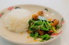 Col rizada con cerdo curruscante en el arroz fotos de archivo