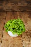 Col rizada verde fresca en cuenco de cerámica Foco selectivo fotografía de archivo libre de regalías