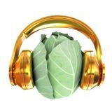 Col verde con los auriculares en un fondo blanco illustra 3D stock de ilustración