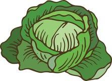 Col verde madura ilustración del vector