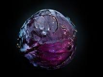 Col violeta Imagen de archivo
