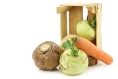 Col y verduras de raíz mezcladas en un cajón de madera Fotos de archivo libres de regalías