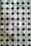 Cola blanco y negro de las manchas Fotos de archivo