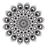 Cola circular blanco y negro del pavo real Fotografía de archivo