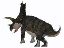 Cola del dinosaurio de Bravoceratops Fotos de archivo