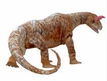 Cola del dinosaurio de Shringasaurus Imagen de archivo