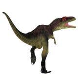 Cola del dinosaurio de Tyrannotitan Fotografía de archivo libre de regalías
