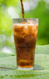 Cola pouring Stock Photography