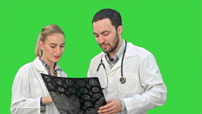 A colaboração médica examina o raio X e discute problemas pacientes em uma tela verde, chave do croma video estoque