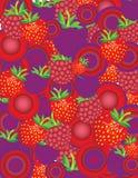 colage ягод Стоковое фото RF