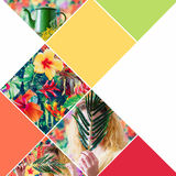 Colage with bright colors and exotic flowers Stock Photography