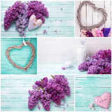 Colagem com flores lilás e corações decorativos Imagens de Stock