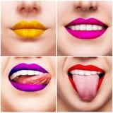 Colagem com imagens do close-up dos bordos coloridos da mulher Imagens de Stock