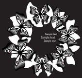 Colagem criativa com borboletas preto e branco Imagem de Stock