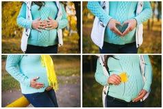Colagem da mulher gravida foto de stock