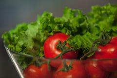 Colagem da nutrição dos tomates e dos verdes, Imagens de Stock Royalty Free