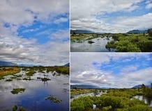 Colagem da paisagem Foto de Stock
