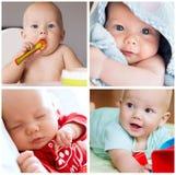 Colagem da rotina diária da criança do bebê das fotos, desenvolvimento, employm Fotografia de Stock
