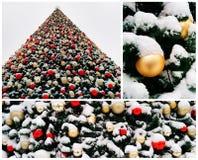 Colagem da árvore de Natal coberto de neve Fotos de Stock Royalty Free