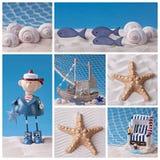 Colagem da vida marinha Imagens de Stock