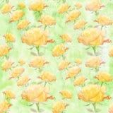 A colagem das flores aumentou na aquarela Papel de parede sem emenda Fotos de Stock