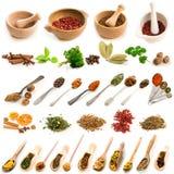 Colagem das fotos de especiarias diferentes Fotografia de Stock
