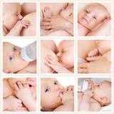 Colagem das fotos dos bebês Foto de Stock Royalty Free