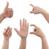 Colagem das mãos da mulher no fundo branco foto de stock royalty free