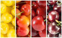 Colagem das variedades diferentes de cereja doce - retângulo fotografia de stock royalty free