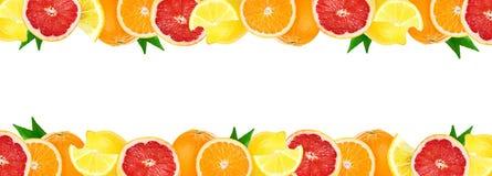 Colagem de citrinas misturadas Frutos frescos da cor ilustração stock