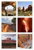 Colagem de diversos parques nacionais Imagem de Stock
