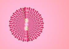 Colagem de flores bonitas cor-de-rosa da tulipa em um fundo cor-de-rosa com espa?o vazio da c?pia fotografia de stock royalty free
