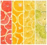 Colagem de frutos frescos do verão Foto de Stock Royalty Free