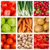 Colagem de nove legumes frescos Imagens de Stock