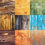 Colagem de várias amostras de madeira diferentes da textura Fotografia de Stock Royalty Free