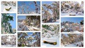 Colagem do inverno Imagens de Stock Royalty Free