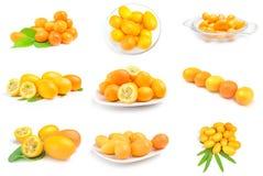 Colagem dos kumquats isolados em um fundo branco com trajeto de grampeamento Fotografia de Stock