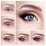 Colagem dos olhos fêmeas com etapas da composição Fotografia de Stock