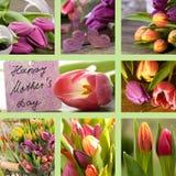 Colagem dos tulips com o cartão do dia de matrizes Imagem de Stock Royalty Free