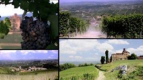 Colagem dos vinhedos e das construções de Langhe vídeos de arquivo