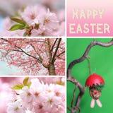 Colagem feliz de easter com flores de cerejeira e o bolo de suspensão de easter Imagem de Stock