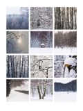 Colagem fevereiro Fotos de Stock