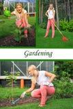 Colagem. Jardinagem ocasional bonita da mulher Fotografia de Stock Royalty Free