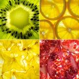 A colagem quadrada sortido da parte traseira 4 iluminou fatias do fruto Imagem de Stock Royalty Free