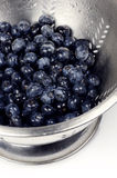 colander blueberry Obrazy Stock