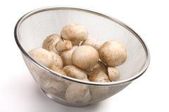Colander of fresh-cut mushrooms champignon. Over white background royalty free stock photo