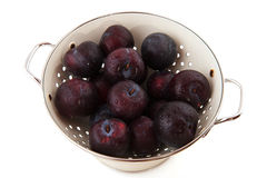 Colander fresh plums Royalty Free Stock Image