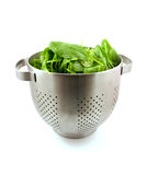 Colander with fresh spinach Stock Image