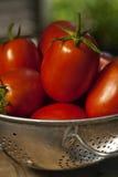Colander und Tomaten Lizenzfreie Stockfotografie