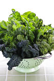 colander warzywa ciemnozieleni obfitolistni Obraz Stock